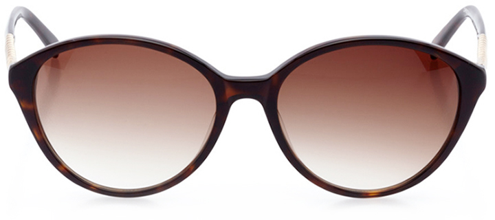 toulouse: women's rectangle sunglasses in tortoise - front view