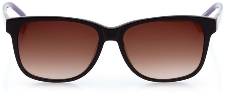 bridgeport: women's rectangle sunglasses in brown - front view