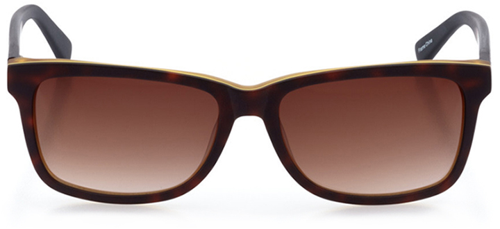 lugano: women's square sunglasses in tortoise - front view