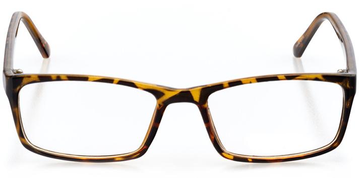austin: women's rectangle eyeglasses in tortoise - front view