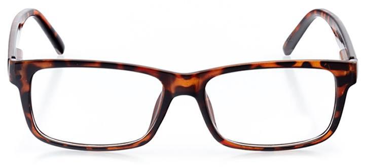 alicante: men's rectangle eyeglasses in tortoise - front view