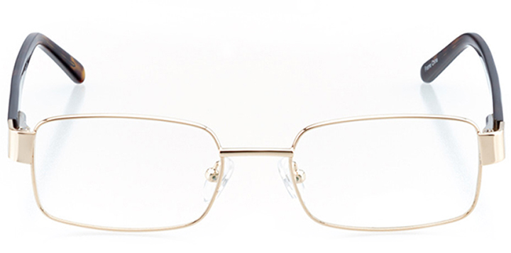 mountain view: men's square eyeglasses in gold - front view