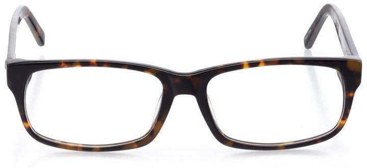 reykjavik: men's rectangle eyeglasses in tortoise - front view