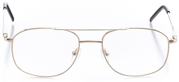 twin falls: men's rectangle eyeglasses in gold - front view