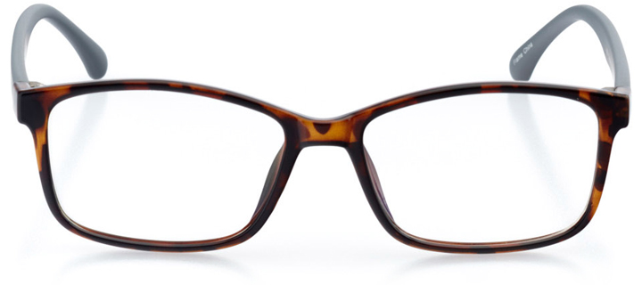 colombo: women's square eyeglasses in tortoise - front view