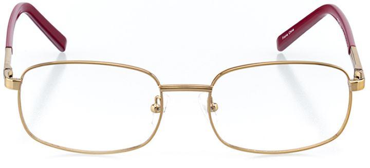 cortez: men's rectangle eyeglasses in gold - front view