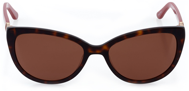 huntington beach: women's cat eye sunglasses in tortoise - front view