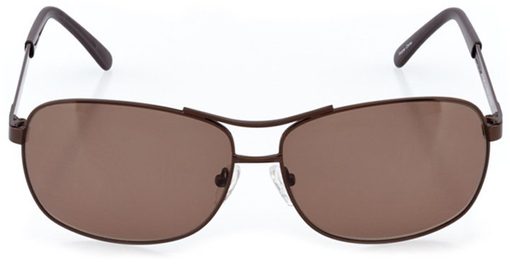 winchester: men's rectangle sunglasses in brown - front view