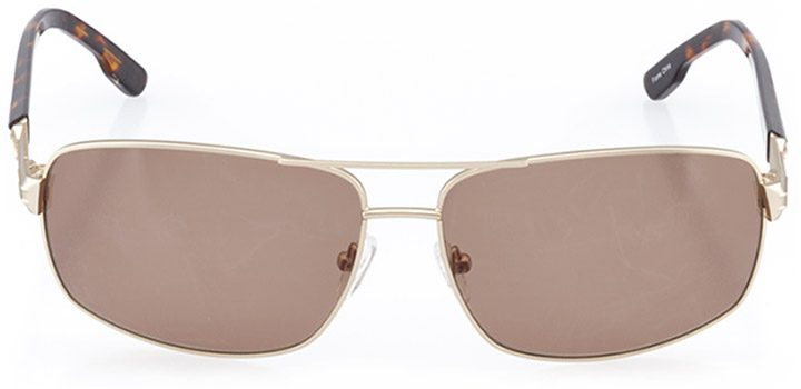 narvik: men's rectangle sunglasses in gold - front view